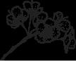벚꽃잎 일러스트