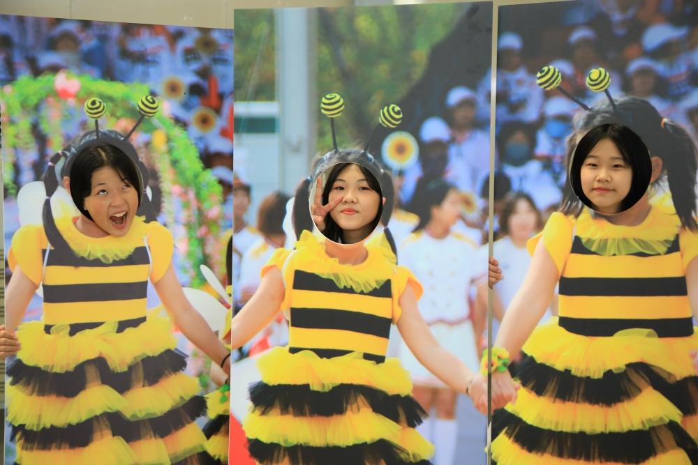 꿀벌 포토존