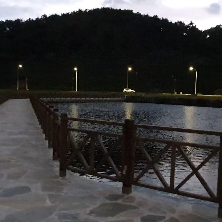 #신앙촌 #신앙촌식품 식품단지 호수 조명이 켜지면 더 예쁜 호수